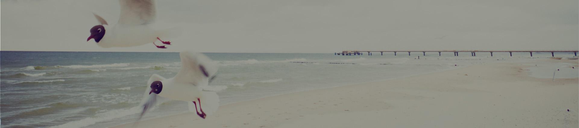 Molo w tle plaży